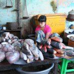 poisson de l Irrawady