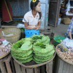 feuilles pour la noix de betel