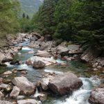 le rio ARA