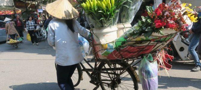 VIETNAM, treck chez les Hmong et les Dao