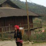 femme Dao