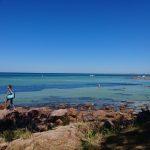 plage avec filets anti-requins