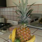 le savoureux ananas du Costa Rica